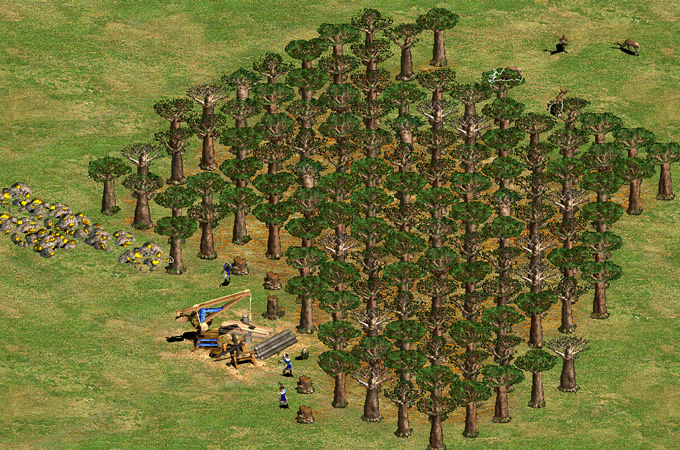 baobabTrees.jpg